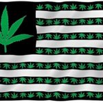ANLEY [Fly Breeze] 3×5 Foot Marijuana Leaf USA Polyester Flag – Vivid Color and UV Fade Resistant – Canvas Header and Double Stitched – US Marijuana Leaves Flags with Brass Grommets 3 X 5 Ft