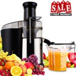 Juicer Juice Extractor Fruit Machine Dual Speed Setting for Fruit and Vegetables Powerful 850 Watt Centrifugal Juicer with Juice Jug, Premium Food Grade Stainless Steel