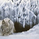 Cobble Hill Dozing Lynx Jigsaw Puzzle