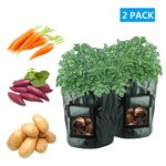 Potato Grow Bags, 2 Pack 10 Gallon Portable Breathable Waterproof PE Potato and Flower Plant Growing Bag for Harvesting Potato,Carrot & Onion By LONGWEN