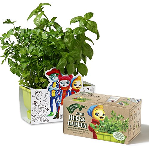 Children Herbs Garden kit, Planter Kit comes with Organic HERBS Seeds, Coloring Planter Case & Markers …