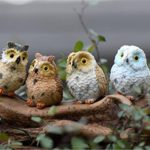 Tmrow 1pc Miniature Fairy Garden Owl Ornament Dollhouse Plant Pot DIY Decor Home Decoration (Color Sent Randomly)