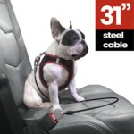 IPrimio 31″ Dog Cable For Dog Collar – Clip Into The Car Seat – Made Up Of Steel With Rubber Coating – Chew Proof Restraining Harness Belt For Your Pet Travel