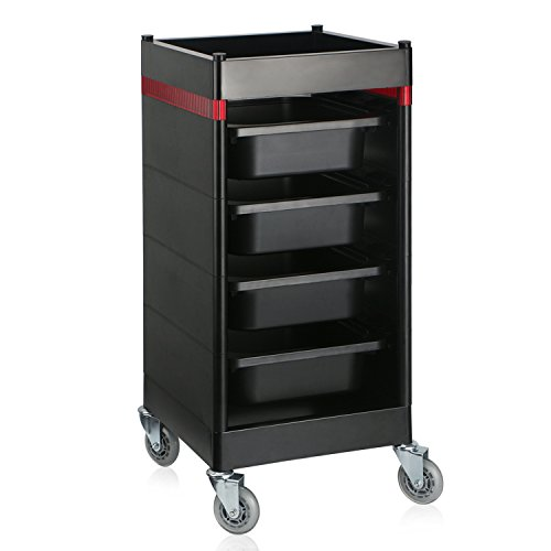 Hair Salon Trolley Cart, Segbeauty Utility Storage Containers Rolling Cart with 4 Drawers & Wheels, Hair Dryer Holder Manicure Pedicure Equipment for Hairdressing, Beauty Salon, Spa