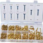 Swordfish 32051 Brass Plated Wood Screw Assortment, 500 Piece