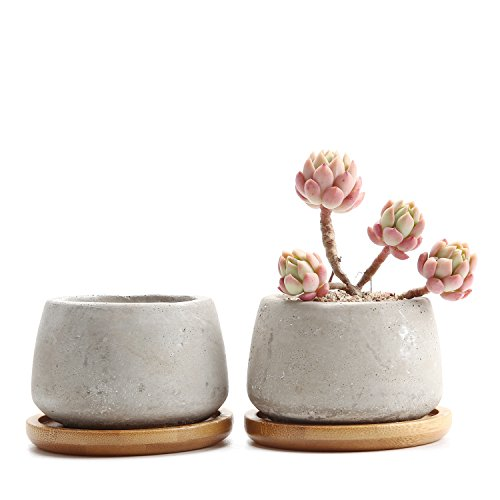 T4U 2.5 Inch Cement Serial Small Round Sucuulent Cactus Plant Pots Flower Pots Planters Containers Window Boxes With Bamboo Tray Grey - Pack of 2
